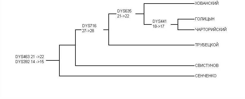 Филогенетическое древо